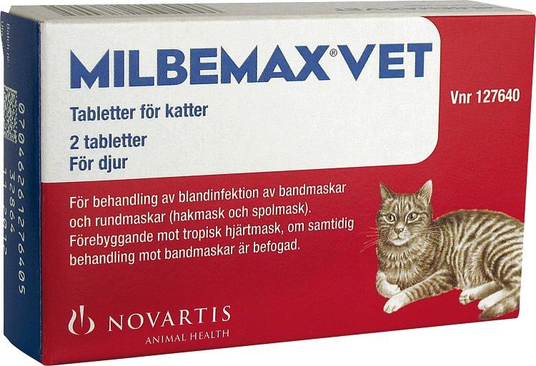 lugnande för katter