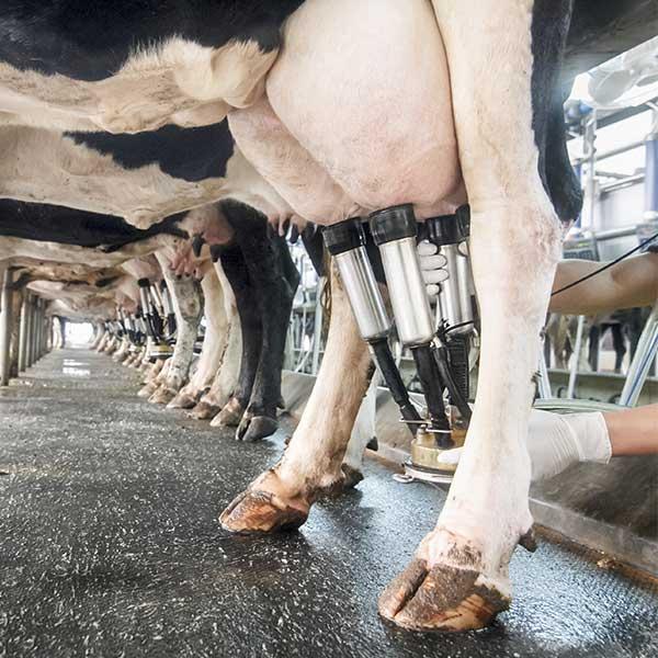 För lantbrukare